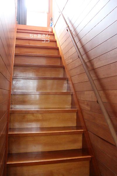 階段の上から呼びます