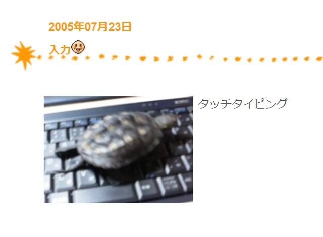 かめき千代2005年7月-1