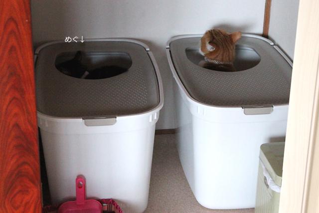 ふたりでトイレ