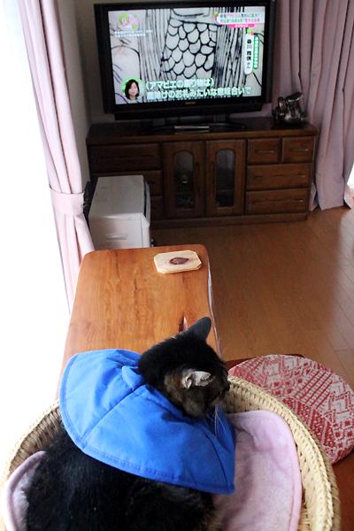 TV見ながら