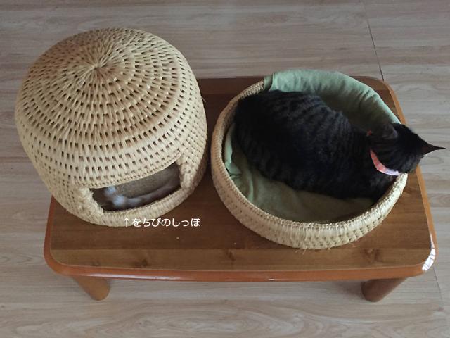猫つぐらと猫つぐら丸形なかよしベッド