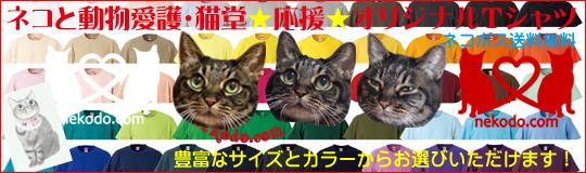 ネコと動物愛護・猫堂応援オリジナルTシャツご注文承り中!