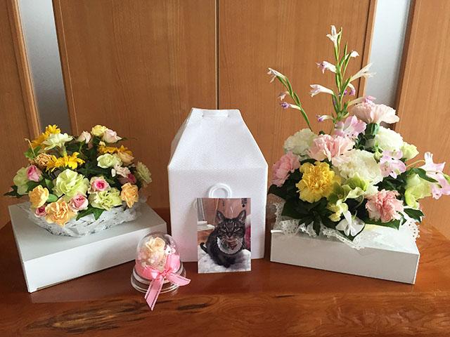お花ありがとうございました。