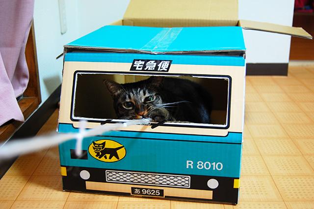 クロネコヤマトの箱