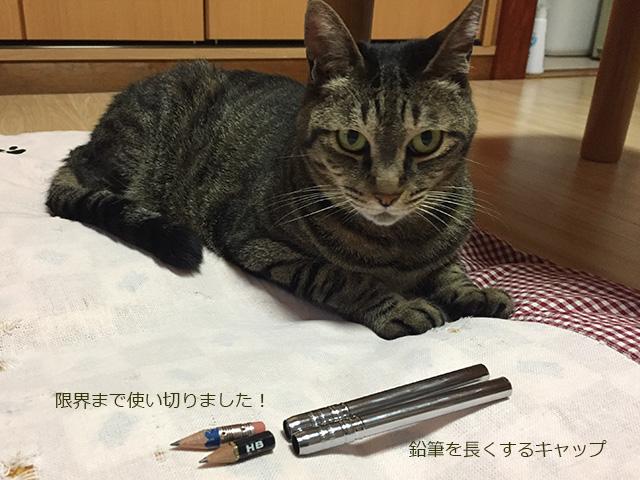 鉛筆の補助軸