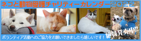 ネコと動物愛護チャリティーカレンダー2022、発売中!