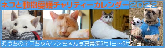 ネコと動物愛護チャリティーカレンダー2022